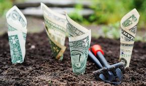 Монетизация блога: Какие слова особенно дорогие на AdSense